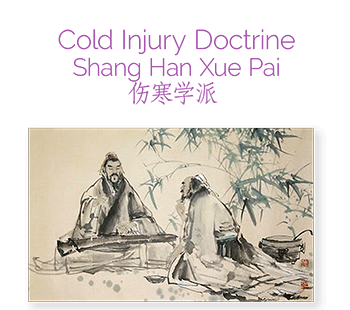 Shang Han Lun: Treatise on Cold Injury