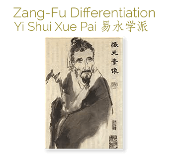 acupuncture ceu course zang fu
