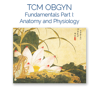 acupuncture ceu course tcm obgyn 1
